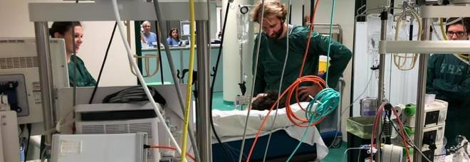 Massimiliano Rosolino va da Manuel Bortuzzo in ospedale: «Da genitore fatico a capire»