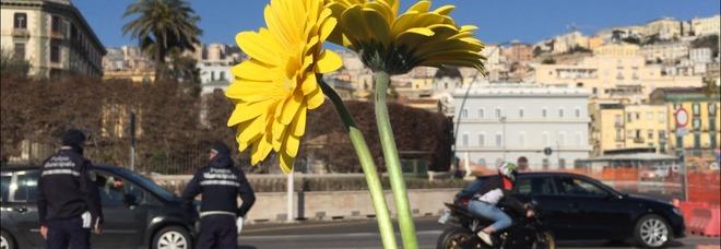 Un «fiore per la pace» al consolato Usa di Napoli: «Basta guerre»