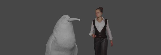 Nuova Zelanda, scoperti resti di un pinguino gigante del Paleocene: era alto come un uomo
