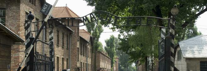 Scoperta choc: due terzi dei giovani adulti non conoscono l'Olocausto