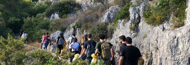 I forum dei giovani ripuliscono i sentieri più belli di Capri