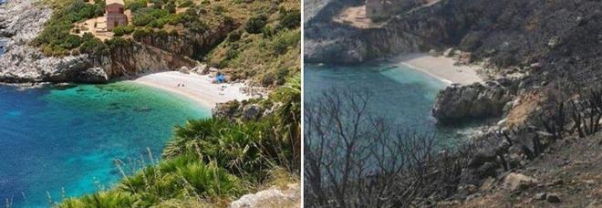 Incendi in Sicilia, il drammatico confronto tra le foto della Riserva dello Zingaro prima e dopo il rogo