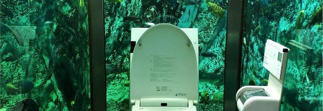 La toilette dell' Hipopo Papa Cafe di Akashi (foto del profilo Instagram yuri.kiwi)