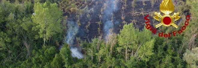 Irpinia nella morsa degli incendi: in fiamme boschi e macchia mediterranea