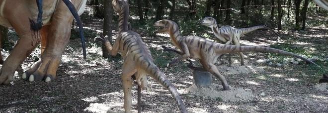 Dinosauri, scoperte impronte di 100 milioni di anni fa in Cina