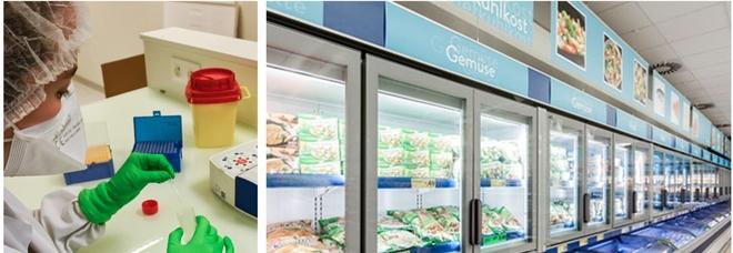 «Il Covid può sopravvivere sugli alimenti congelati»: lo studio degli scienziati asiatici