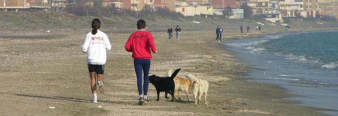 Camminare facendo più di 3 mila passi al giorno migliora la qualità
