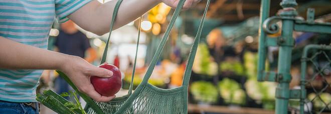 Alimentare, digitale e sostenibilità le sfide future per il comparto