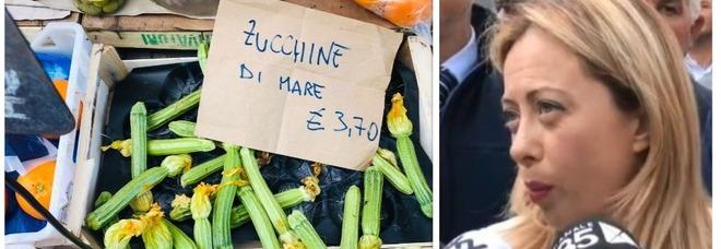 Giorgia Meloni e le 'zucchine di mare': la gaffe anti-Macron conquista Twitter