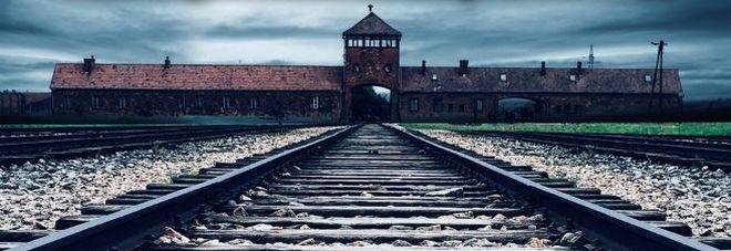 «Il bibliotecario di Auschwitz»: libri per combattere le SS nel nuovo romanzo di Frediani