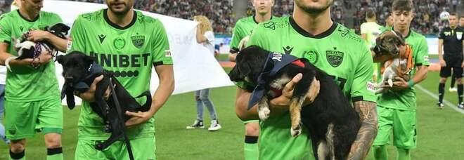 Romania, calciatori in campo per un anno con in braccio i cuccioli randagi per favorire le adozioni