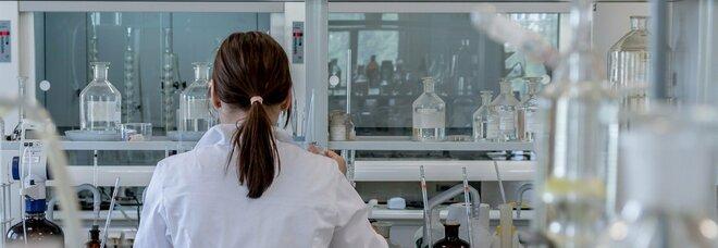 Embrioni umani ottenuti da cellule staminali: nuova scoperta dell'Università del Texas