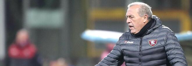 Salernitana, Castori non si arrende: «Rialziamoci dopo il ko di Lecce»