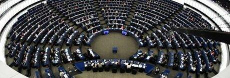 Elezioni europee, sondaggi: Lega primo partito, secondo nell'Ue
