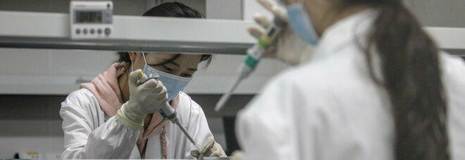 Diabete, più gravi gli effetti del Covid: per proteggersi va tenuta in equilibrio la glicemia