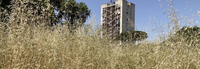 Napoli, si ripulisce il parco De Simone a Ponticelli: erba oltre due metri