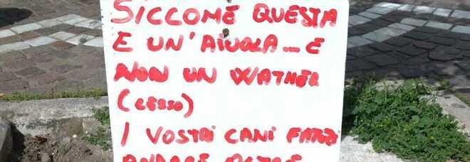 Degrado a Napoli, escrementi di cani davanti al negozio: «È un'aiuola, non è un water»