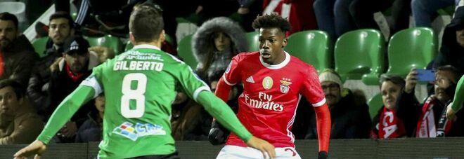 Tavares al Napoli, si alza il pressing ma il Benfica aspetta l'offerta giusta