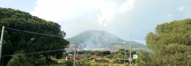 In fiamme alberi e sterpaglie: tornano gli incendi nell'area del Vesuvio