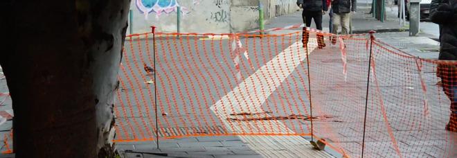 Napoli, alberi in bilico a Fuorigrotta l'appello: «Intervenire per evitare tragedie»