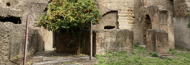 Riapre l'area archeologica di Forcella: tre speciali visite per ammirare le bellezze di Napoli