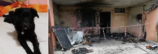 Campagnano, tirano petardi in giardino e la casa si incendia: «Erano bambini»