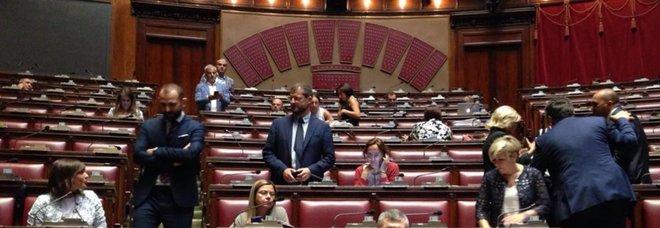Milleproroghe, prima fiducia del governo. Il Pd occupa la Camera: «Illegittimo»