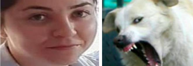 Ventenne aggredita e uccisa dai cani randagi nei boschi di Satrian