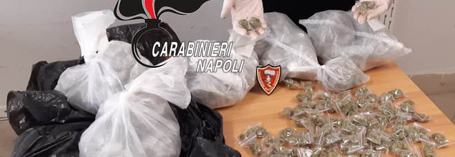Napoli, sequestrato un chilo di marijuana in un'aiuola al Rione Traiano