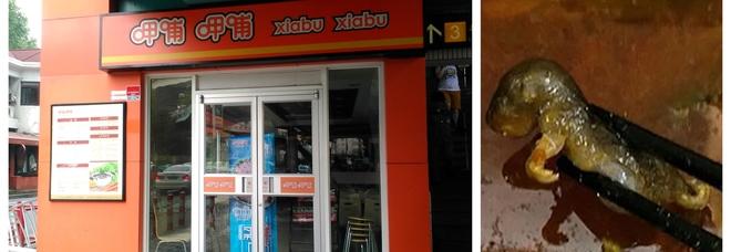 Cliente trova un topo nella zuppa, ristorante cinese perde 190 milioni