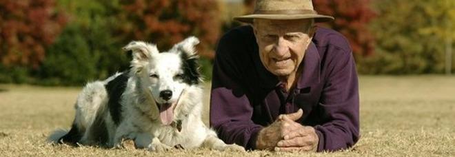 Chaser, la cagnolina più intelligente del mondo, che sapeva riconoscere oltre 1000 sostantivi è morta all'età di 15 anni