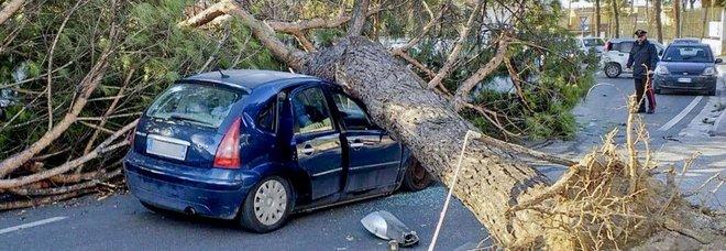 Napoli: vento forte e mare agitato, stop ai collegamenti con le isole. Danni e strade chiuse, rogo a Pozzuoli
