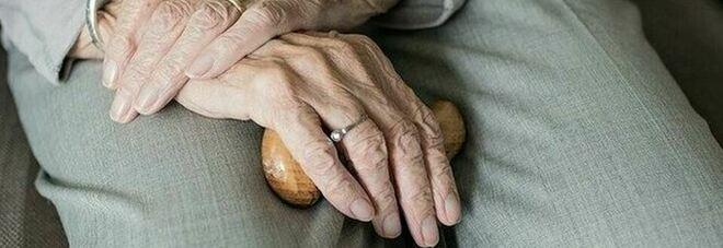 Parkinson, scoperto composto di erbe e un nuovo tampone nasale per prevenire l'aggravarsi del morbo