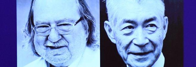 Nobel per la Medicina 2018 a James P. Allison e a Tasuku Honjo