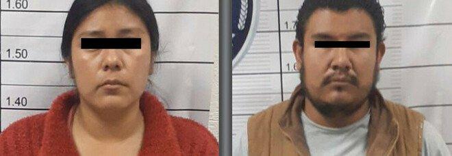 La polizia messicana ha arrestato due persone per aver picchiato e ucciso brutalmente un cane