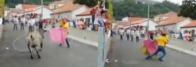 Festa coi tori in strada, affronta l'animale con la figlia piccola in braccio