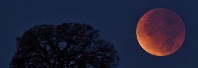 Eclissi di Luna domenica notte: sarà super, ecco come seguirla