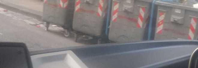La fermata di via Mario Fiore circondata dai cassonetti