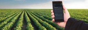 Satelliti, app e gps anti sprechi così fiorisce la web agricoltura