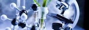 20mila euro per le startup Biotech: è il premio di Eit Health Catapult