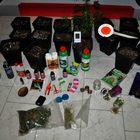 Coltivava marijuana in garage,  arrestato pusher col pollice verde