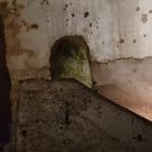 Alla scoperta del giardino di Babuk l'antico ipogeo nel cuore di Napoli