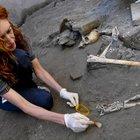 Pompei, trovati cinque scheletri