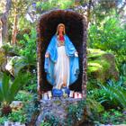 Ischia, tre ragazze rubano i ceri nel Santuario della Madonna di Zaro