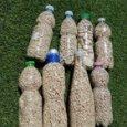 Turisti spagnoli rubano ciottoli di Cala Mariolu in Sardegna: sorpresi con 8 bottiglie piene di sabbia