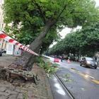 Grandinate e maltempo: nubrifagio choc a Torino