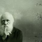 Perché Darwin ha inventato la vita