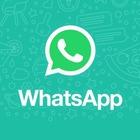WhatsApp, lo strano caso dei messaggi che spariscono dalle chat