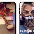 Snapchat, arrivano i filtri per il gatto: «Provali miagolando». Ecco come attivarli