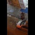 Choc a Napoli, immigrato nudo terrorizza i passanti con un coltello